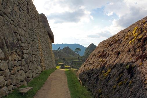 Machu Picchu – Fernando Alvarez 15